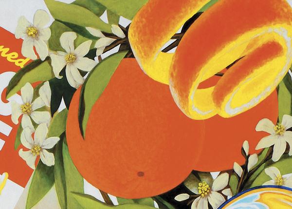 detail-xray-orange-painting